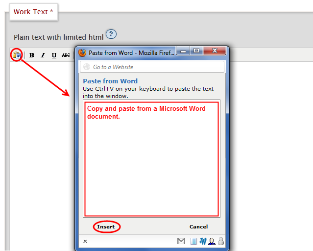 Paste from Word interface